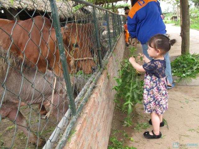 Vé vui chơi tại trang trại thiên nhiên Erahouse - 30