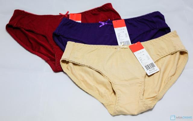 Combo 3 quần lót nữ cao cấp xuất khẩu - 6