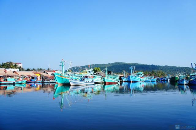 Tour Phú Quốc 1 ngày câu cá, câu mực - lặn biển ngắm san hô - 14