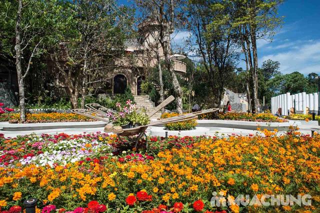 Tour du ngoạn Bà Nà - Núi Chúa 01 ngày do Công ty Vitours tổ chức - 23
