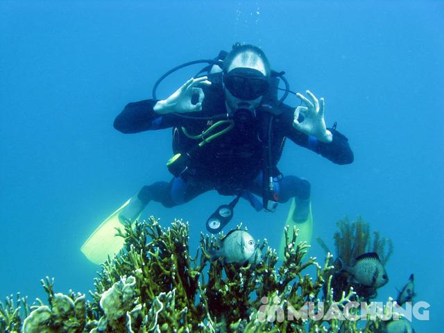 Du lịch 4 đảo nổi tiếng ở Nha Trang bằng tàu - 2