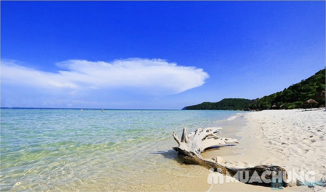 Tour Phú Quốc 1 ngày - Lặn biển ngắm san hô, câu cá ... - 24