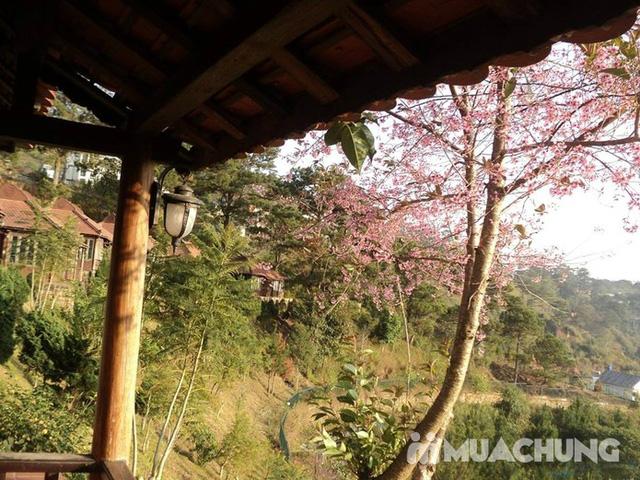 Osaka Village Đà Lạt 3 sao - Không phụ thu cuối tuần - Tặng ngay 50.000 đ cho khách vào ví Muachung - 14